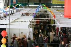 Всероссийская ярмарка в Удмуртии-самое интересное еще впереди!